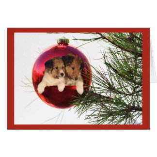 Sheltie Christmas Card Ball Hanging