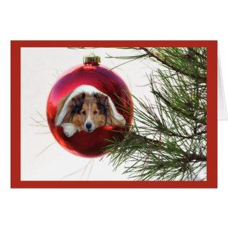 Sheltie Christmas Card Ball Hanging