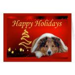 Sheltie Christmas Card Stars