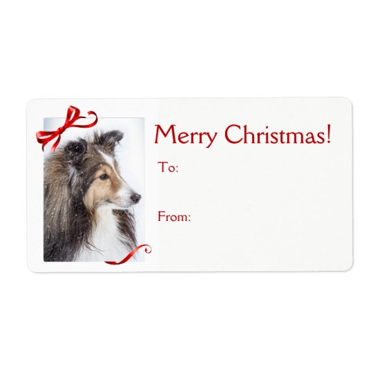 Sheltie Christmas Gift Sticker