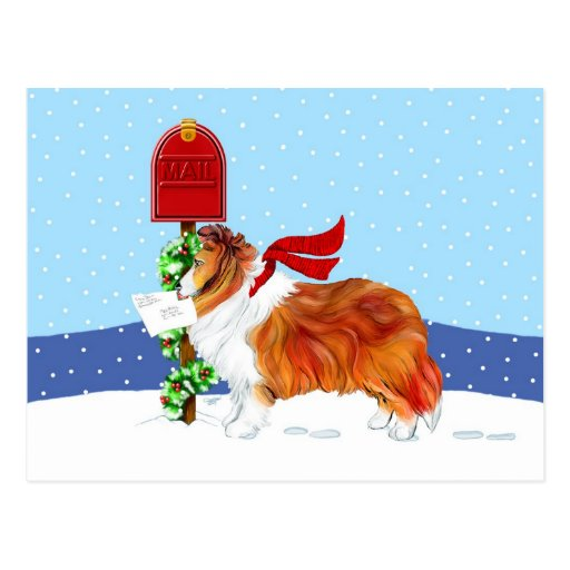Sheltie Christmas Mail Sable Post Card