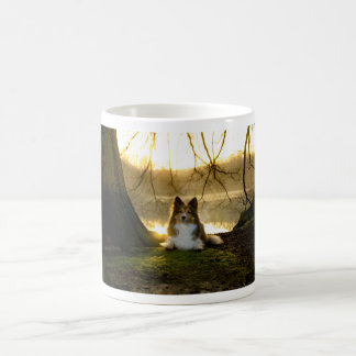 sheltie coffee mug