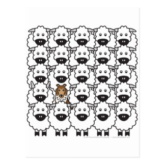 Sheltie in the Sheep Postcard