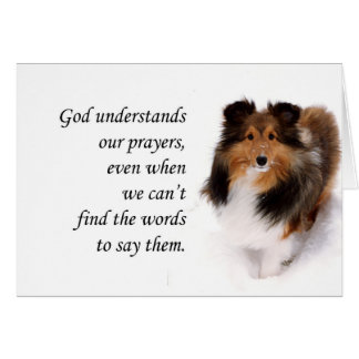 Sheltie Thinking of You Card