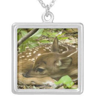 Shenandoah NP, Virginia, USA Silver Plated Necklace