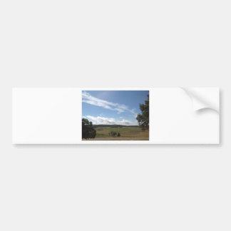 Shenandoah postcard 1 car bumper sticker