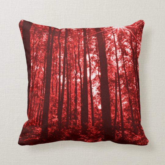 Shenandoah Red Cushion