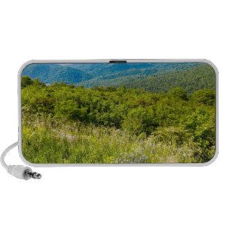 Shenandoah Travelling Speaker