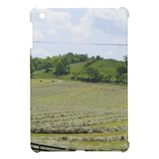 Shenandoah Valley iPad Mini Cases