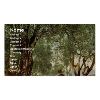 Shephard with flock in olive grove, Mentone, River Business Card Template