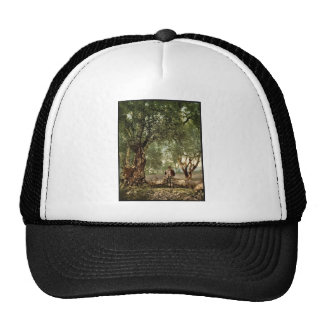 Shephard with flock in olive grove, Mentone, River Hats