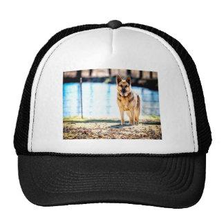 Shepherd Cap