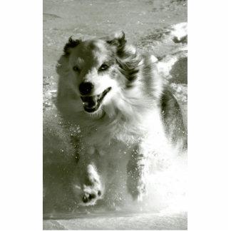 Shepherd Dog Running In Snow, Standing Photo Sculpture