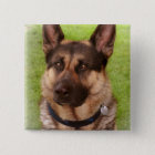 Shepherd Dog Square Pin