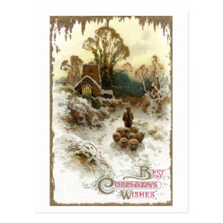 Shepherd Herding Sheep Vintage Christmas Postcard