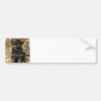 Shepherd Puppy  Bumper Sticker