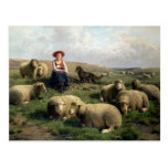 Shepherdess with Sheep in a Landscape Post Card