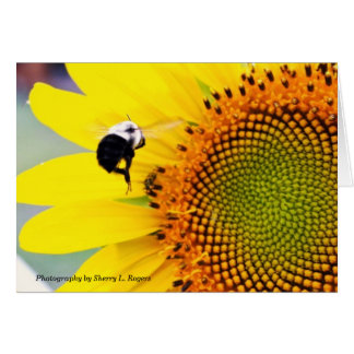Sherry's Bumblebee Card