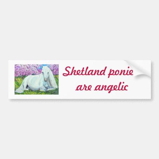, Shetland ponies are angelic Bumper Sticker