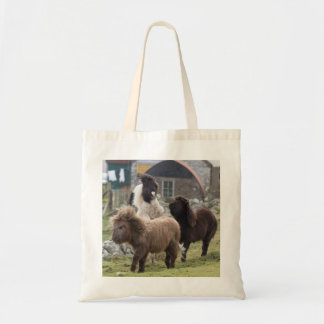 Shetland pony colts playing - Useful bag