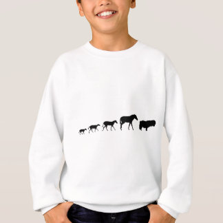 Shetland Pony Evolution Sweatshirt
