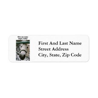 Shetland Pony Give Me Some Sugar Funny Photo Return Address Label