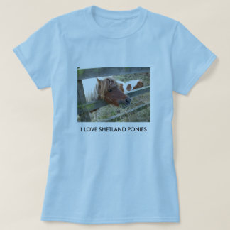 Shetland Pony Ladies Baby Doll T-Shirt