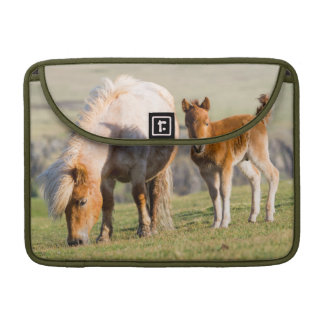 Shetland Pony On Pasture Near High Cliffs, Mare Sleeve For MacBook Pro