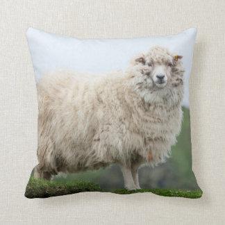 Shetland Sheep Cushion