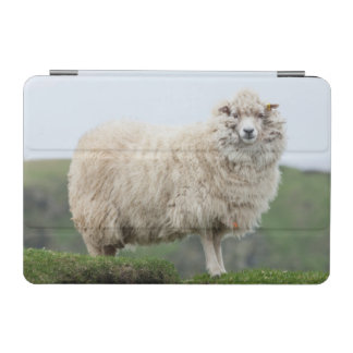 Shetland Sheep iPad Mini Cover