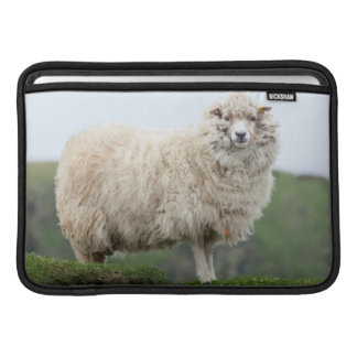 Shetland Sheep Sleeve For MacBook Air