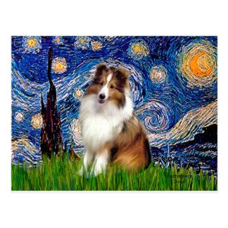 Shetland Sheepdog 4 - Starry Night Postcard