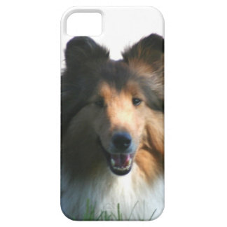 Shetland Sheepdog Barely There iPhone 5 Case