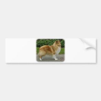 Shetland Sheepdog Car Bumper Sticker