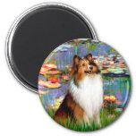 Shetland Sheepdog (Bz) - Lilies 2 Fridge Magnets