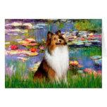 Shetland Sheepdog (Bz) - Lilies 2 Greeting Card