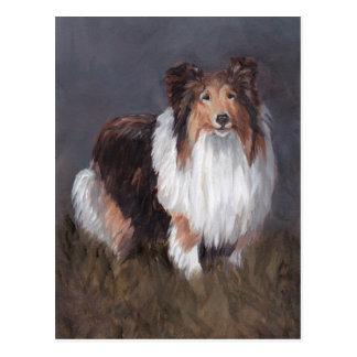 Shetland Sheepdog Dog Art Post Card
