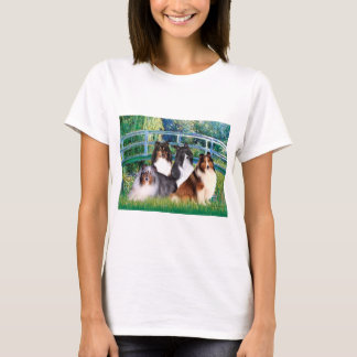 Shetland Sheepdog (four) - Bridge T-Shirt