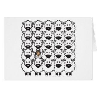 Shetland Sheepdog in the Sheep Card