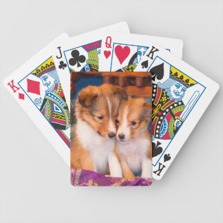 Shetland Sheepdog puppies sitting by wooden wagon Bicycle Playing Cards