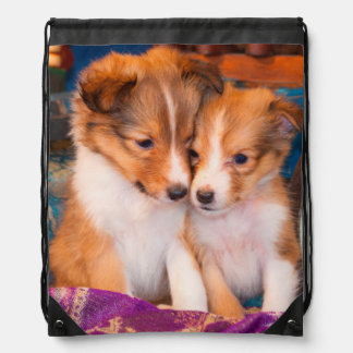 Shetland Sheepdog puppies sitting by wooden wagon Drawstring Bag
