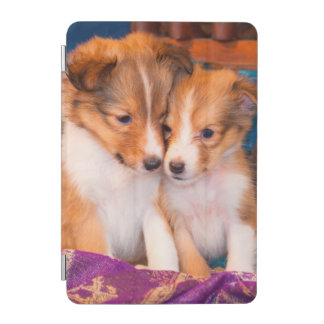 Shetland Sheepdog puppies sitting by wooden wagon iPad Mini Cover