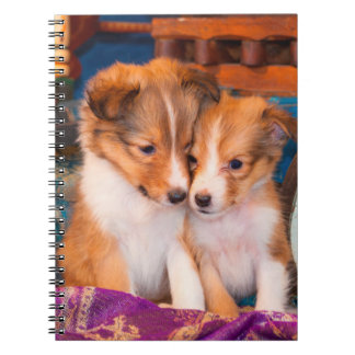 Shetland Sheepdog puppies sitting by wooden wagon Spiral Notebook