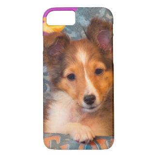 Shetland Sheepdog puppy in a hat box iPhone 7 Case