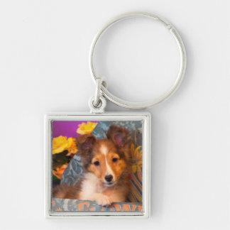 Shetland Sheepdog puppy in a hat box Key Ring