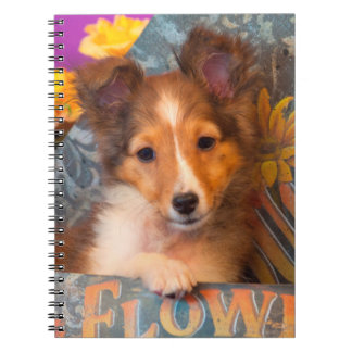 Shetland Sheepdog puppy in a hat box Notebook