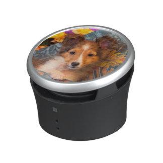Shetland Sheepdog puppy in a hat box Speaker