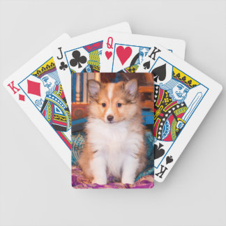 Shetland Sheepdog puppy sitting by small wagon Bicycle Playing Cards