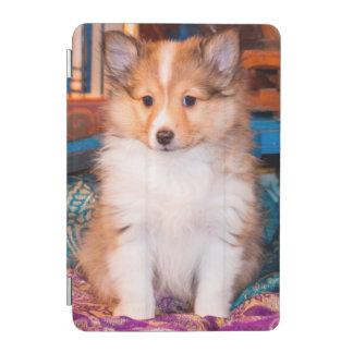 Shetland Sheepdog puppy sitting by small wagon iPad Mini Cover