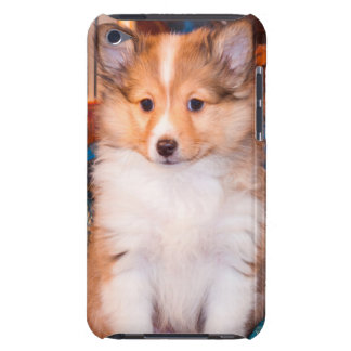 Shetland Sheepdog puppy sitting by small wagon iPod Touch Case-Mate Case